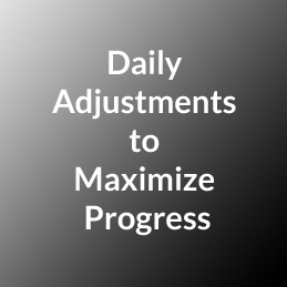 Daily Adjustments to Maximize Progress