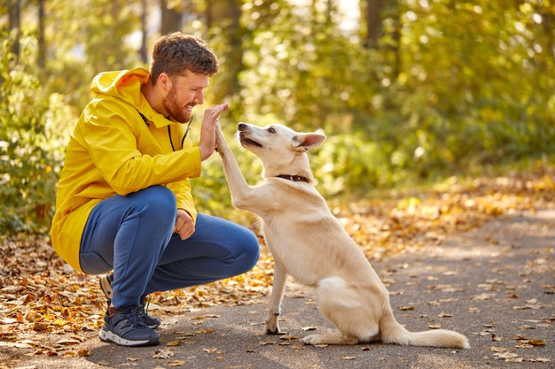 best dating photos for guys with dog pictures